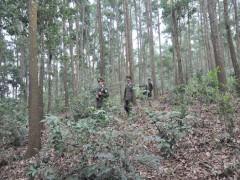 Nâng cao phẩm cấp rừng phòng hộ, tạo sinh thủy nguồn nước cho hồ Yên Lập