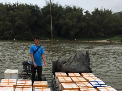 Quảng Ninh: Bắt giữ hơn 1 tấn cá đông lạnh không rõ nguồn gốc