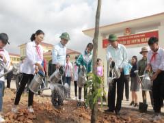 Tết trồng cây năm 2019: Quảng Ninh trồng được trên 350 ngàn cây xanh