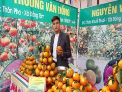 Trương Văn Đồng và 3 mô hình phát triển kinh tế hiệu quả