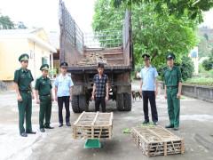 Bắt giữ xe tải chở hơn 400 kg mèo nhập lậu từ Trung Quốc