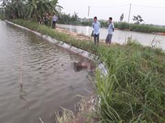Ra ao thăm cá, rụng rời chân tay khi thấy xác người chết nổi trên mặt nước