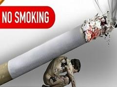 Hội thảo thúc đẩy cách tiếp cận tổng thể nhằm thực hiện hiệu quả luật phòng chống tác hại của thuốc lá