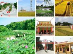 Tỉnh Thái Nguyên hoàn thành chỉ các tiêu nông thôn mới năm 2018