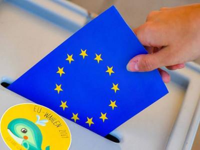 Bầu cử Nghị viện châu Âu khóa mới: Ngày quyết định cuối cùng
