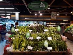 LOTTE Mart cam kết trở thành siêu thị đầu tiên không ni lông tại Việt Nam