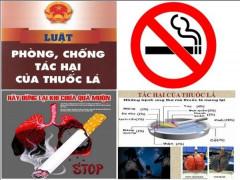 Một số kết quả sau 5 năm thực hiện Luật Phòng chống tác hại của thuốc lá