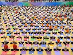 """Ngày Quốc tế Yoga lần thứ 5 với chủ đề """"Yoga cho cuộc sống xanh"""""""