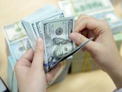 Tỷ giá ngoại tệ hôm nay: Giá USD tăng nhẹ