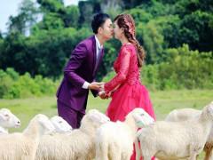 Đồng cừu Suối Nghệ - Điểm hẹn lãng mạn của các cặp đôi trẻ