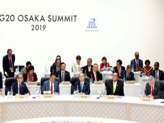 Việt Nam đóng góp tích cực vào thành công của Hội nghị G20