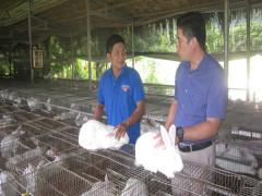 Lục Yên: Nguồn vốn NHCSXH phủ đến 195/195 thôn, tổ dân phố trong toàn huyện