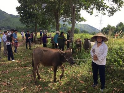 Quảng Ninh: Phấn đấu hết năm 2019 không còn hộ nghèo thuộc đối tượng chính sách người có công với cách mạng
