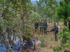 Vai trò của thanh niên quân đội tham gia bảo vệ tài nguyên rừng trên địa bàn tỉnh Lâm Đồng hiện nay
