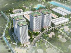 Nhà ở Việt Nam - xu thế nào đang chiếm lĩnh thị trường