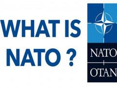 """NATO hằn rõ """"dấu vết tuổi tác"""" khi đón sinh nhật tuổi 70"""