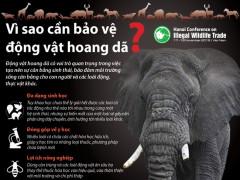 """Chính thức khởi động chiến dịch truyền thông """"Nâng cao nhận thức và thay đổi hành vi sử dụng các sản phẩm từ động vật hoang dã bất hợp pháp"""""""
