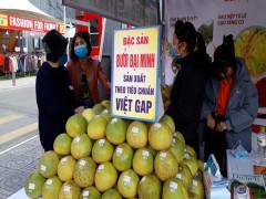 Nhiều nông sản quý hiếm tỉnh Yên Bái có mặt tại Big C Thăng Long - Hà Nội