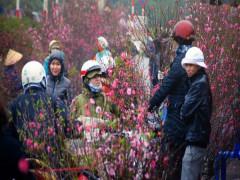 Tết Nguyên Đán: Bắc Bộ rét đậm, rét hại; có thể xuất hiện băng giá