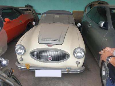 Xế cổ Austin-Healey 3000 MK II phủ bụi tại garage ở Sài thành khiến bao người xót