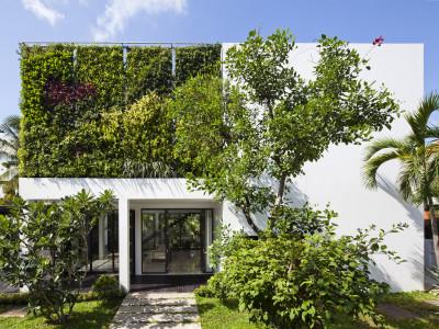 Thảm thực vật xanh mướt bao phủ biệt thự ngoại ô Sài Gòn
