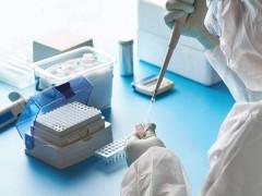 Sự khác nhau giữa test nhanh và test chậm để xác định người nhiễm  với virus SARS-CoV-2