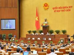 Hôm nay, Quốc hội xem xét Nghị quyết về miễn thuế sử dụng đất nông nghiệp