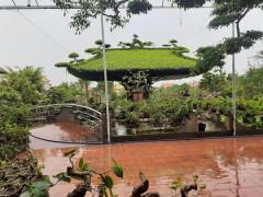 Vũ Thư phát triển nông nghiệp gắn với du lịch sinh thái