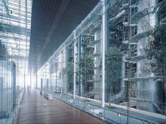 Môi trường xây dựng: Một góc nhìn khác về Nhật Bản