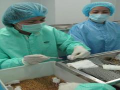 WHO đánh giá cao năng lực nghiên cứu test kit và vaccine của Việt Nam