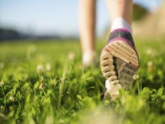 Mẹo giúp chạy 30 phút liên tiếp sau 8 tuần