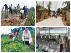 Nông thôn mới ở Thái Nguyên: Thành quả và triển vọng
