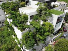 Nhà cho cây xanh - giải pháp giảm thiểu tác động của biến đổi khí hậu