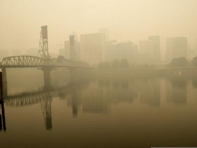 Thời buổi ô nhiễm, không khí sạch thành tiện nghi xa xỉ giúp nhà dễ bán