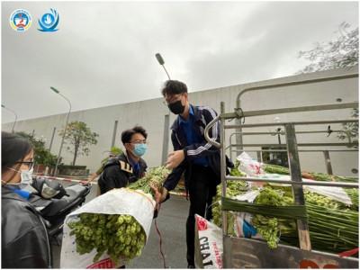 Sinh viên Hà Nội chung tay hỗ trợ giải cứu nông sản Hải Dương