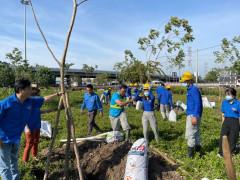 Ra quân trồng 200 cây xanh