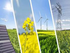 Năng lượng tái tạo – yếu tố trụ cột cho tăng trưởng xanh