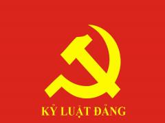 Ban Bí thư kỷ luật Ban Thường vụ Đảng ủy Cảnh sát biển Việt Nam nhiệm kỳ 2015-2020 và một số cá nhân