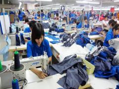 Thủ tướng ban hành Quyết định về việc hỗ trợ người lao động và người sử dụng lao động từ quỹ Bảo hiểm thất nghiệp