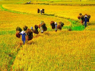 """Cùng """"Ngày Việt Nam tại Thuỵ Sỹ năm 2021"""" khám phá những điều thú vị khi du lịch Việt Nam"""