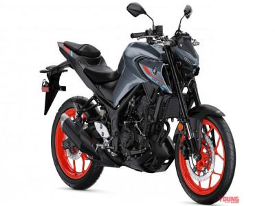 Yamaha sắp tung ra naked bike MT-25 2021 hoàn toàn mới